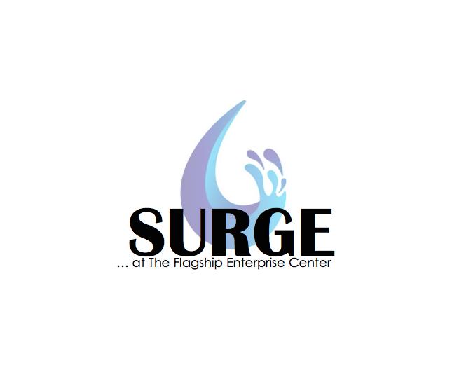 Surge Screen Shot
